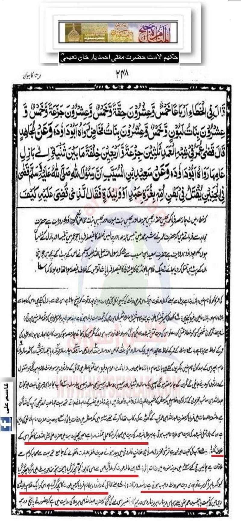 دیت کی جعلی فتوی فیکٹری پر منہاج القرآن کی فتح کا جھنڈا - Page 2 16_d10