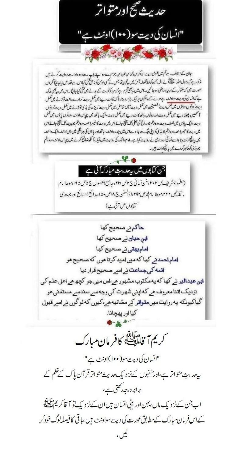 دیت کی جعلی فتوی فیکٹری پر منہاج القرآن کی فتح کا جھنڈا - Page 2 Post310