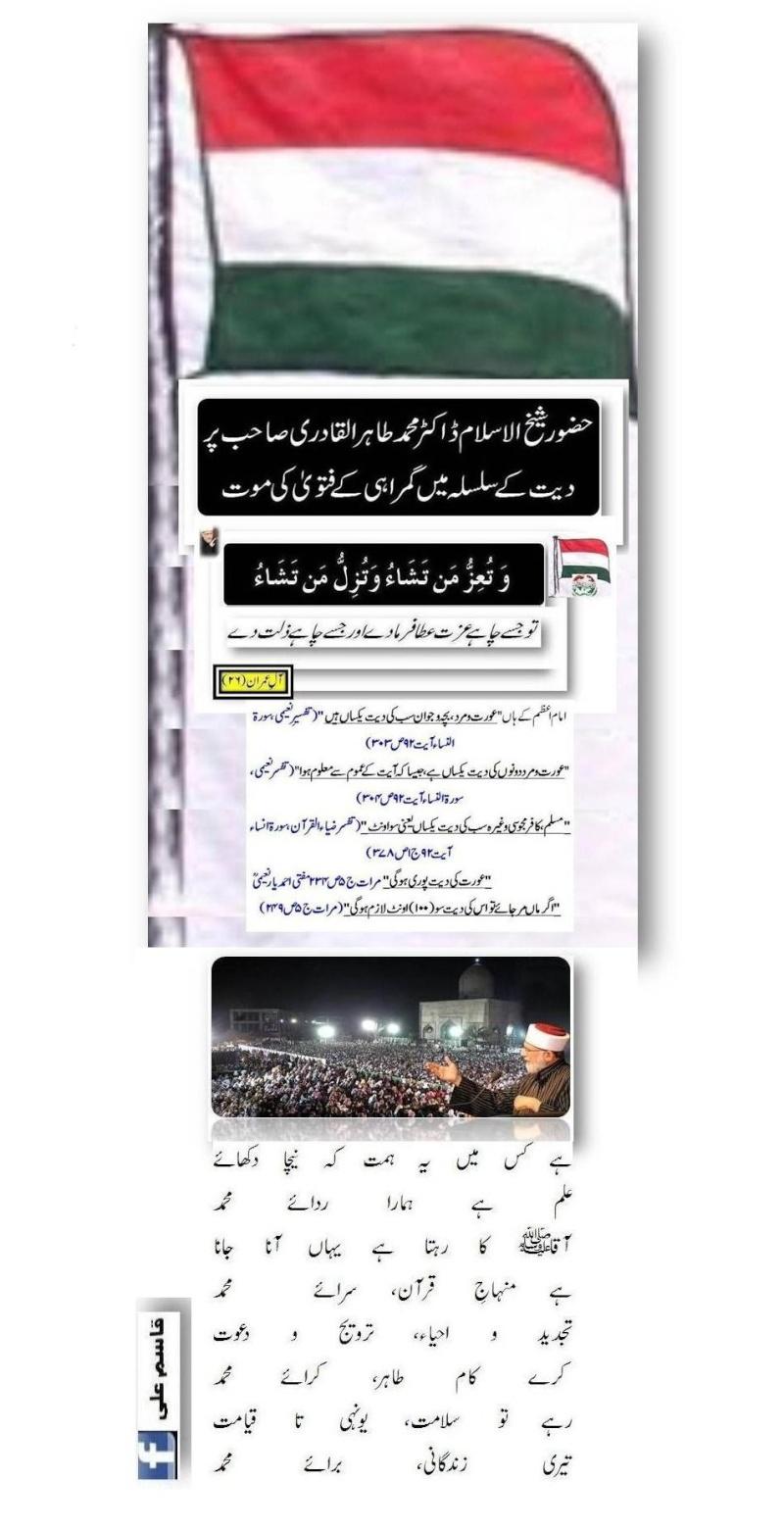 دیت کی جعلی فتوی فیکٹری پر منہاج القرآن کی فتح کا جھنڈا - Page 2 Postd410