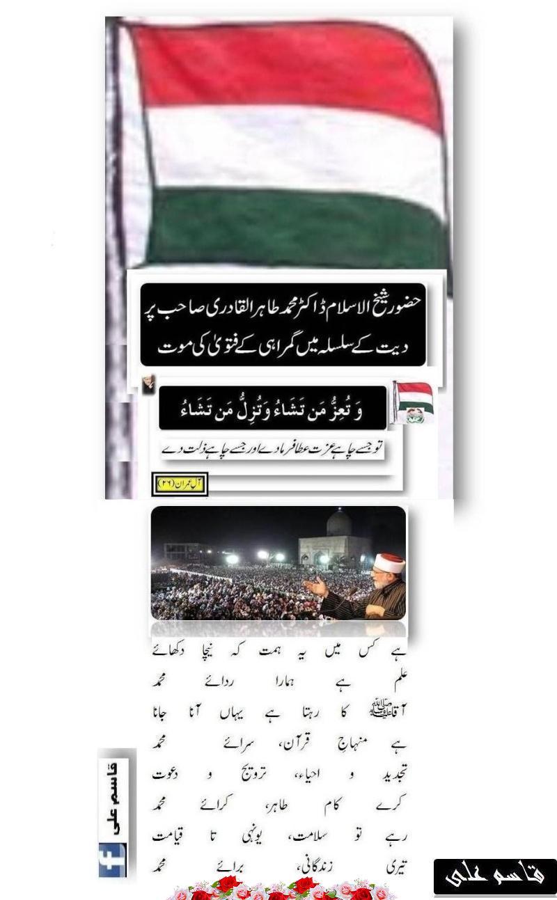 دیت کی جعلی فتوی فیکٹری پر منہاج القرآن کی فتح کا جھنڈا - Page 2 Postd411