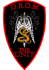 The Unit Airsoft