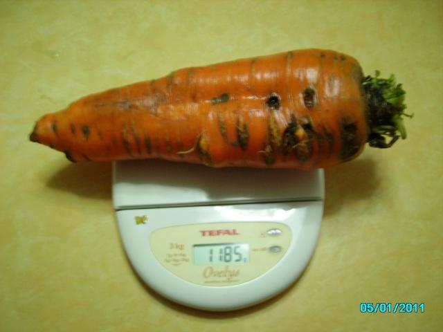 Légumes aux formes bizzares. Noel_e10