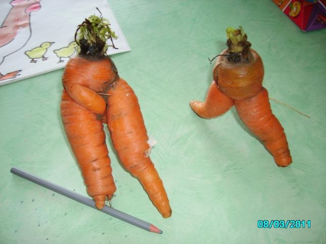 Légumes aux formes bizzares. Salon_13