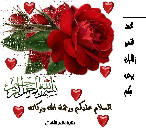 محمد زهران الأخصائى