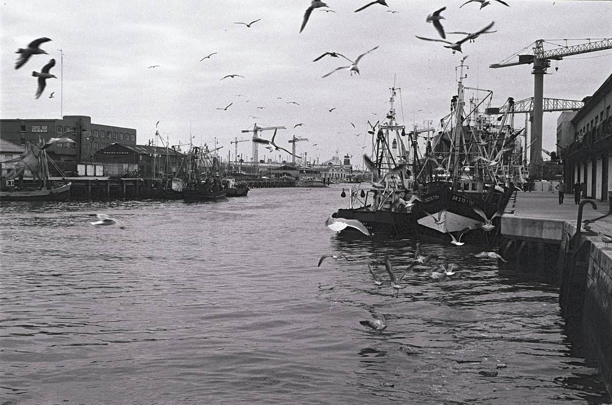 [ Histoire et histoires ] Le port de Dunkerque. _copie12