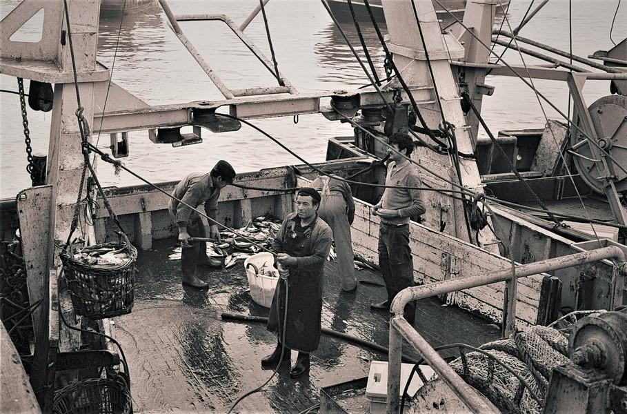 [Vie des ports] Port de Boulogne Boulog15