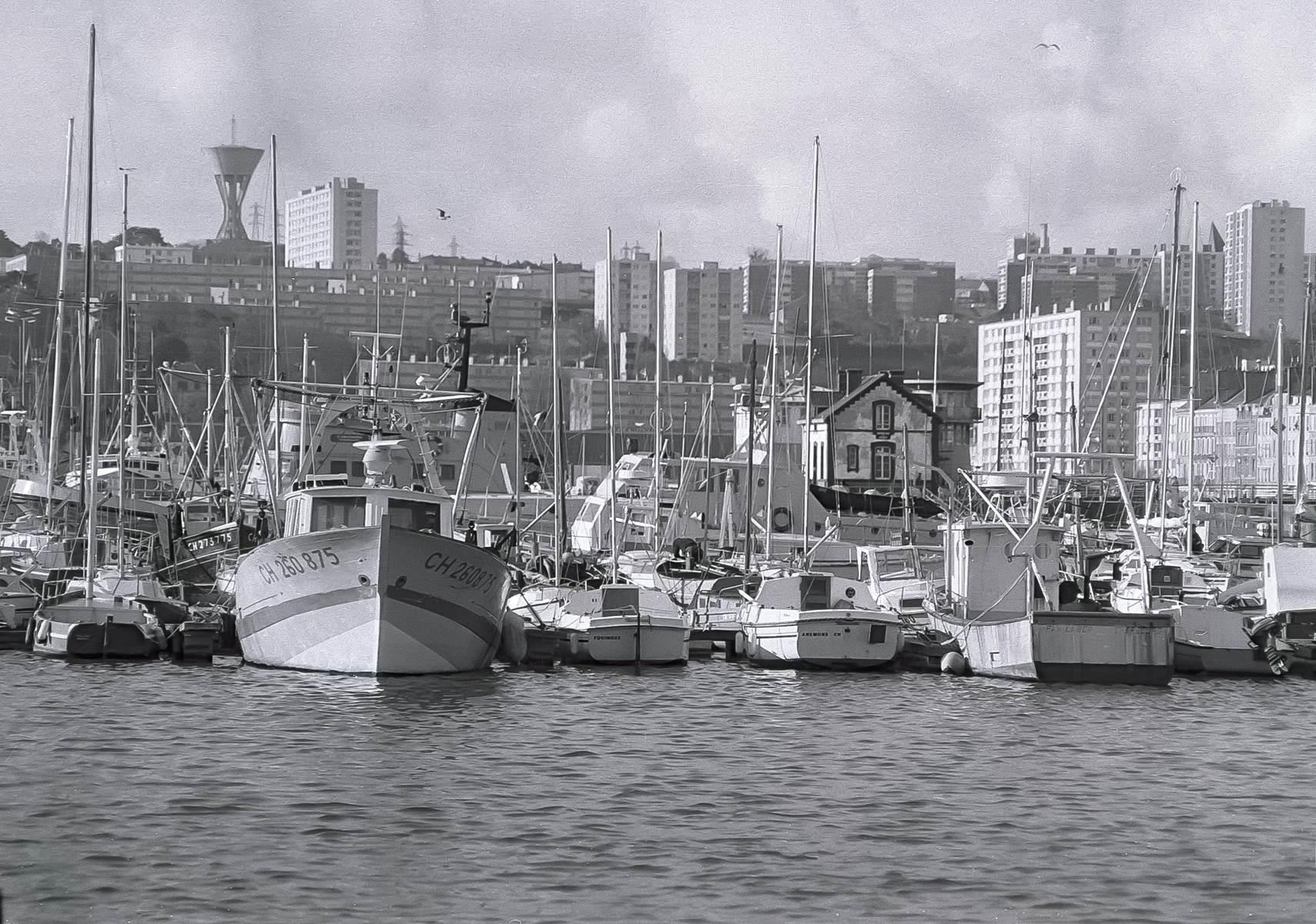 [Activité des ports hors Marine] LE PORT DE CHERBOURG - Page 19 Cherb_29