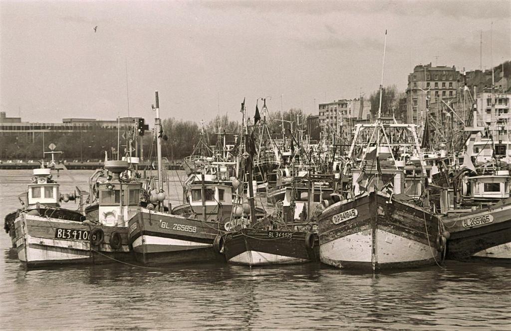 [Vie des ports] Port de Boulogne - Page 2 Gambet13