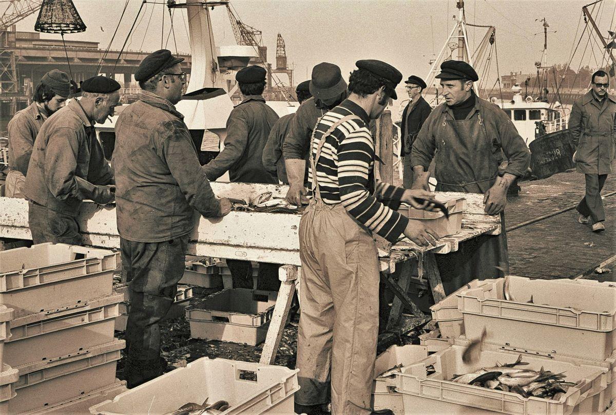 [Vie des ports] Port de Boulogne Toto11
