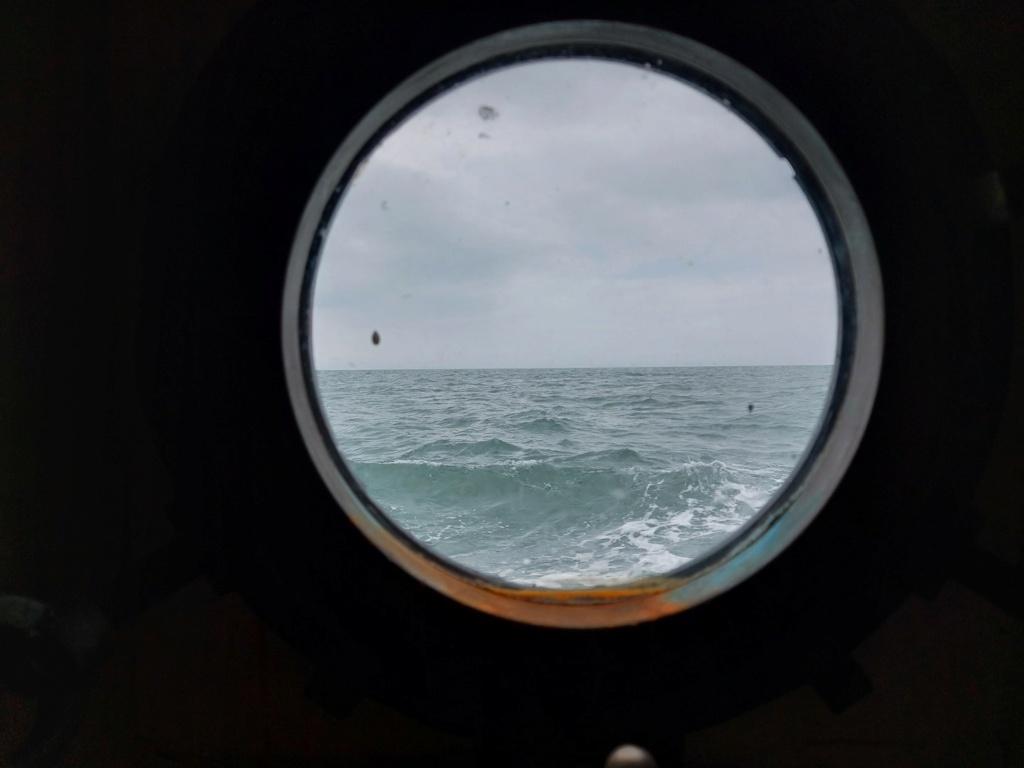 Ma navigation sur le trois-mâts Belem - Page 5 2021-081