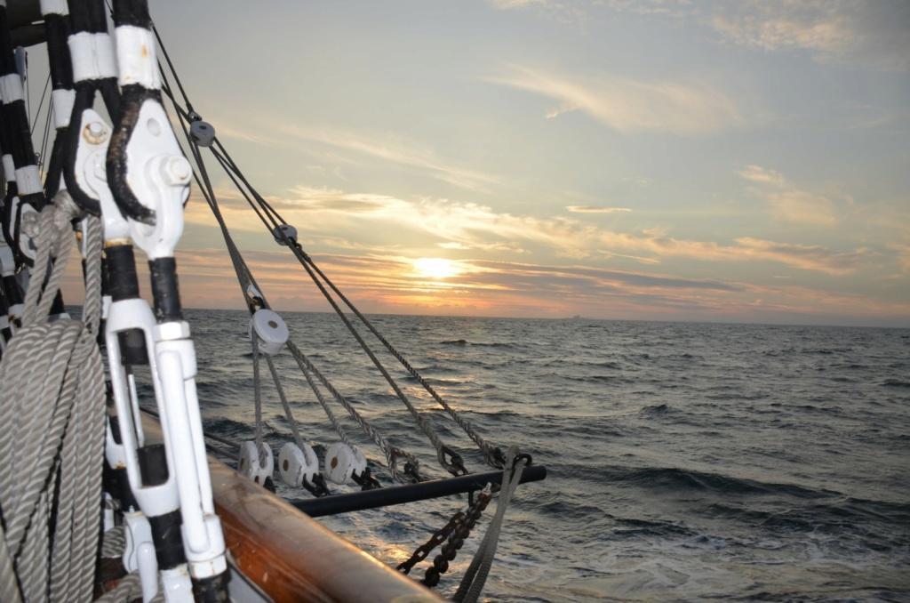 Ma navigation sur le trois-mâts Belem - Page 5 2021-103