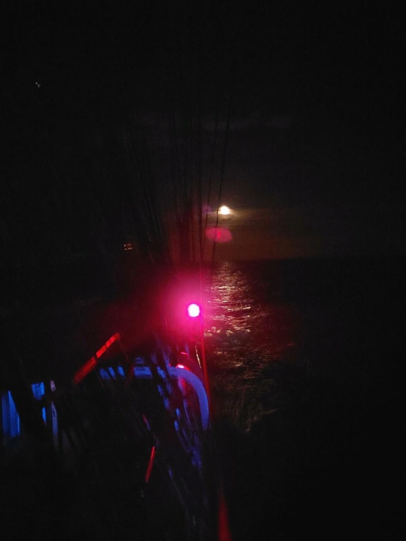 Ma navigation sur le trois-mâts Belem - Page 5 2021-105