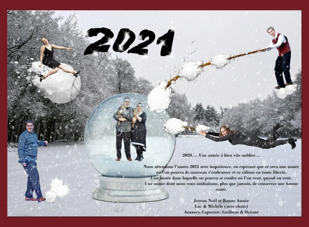 Meilleurs voeux pour 2021 Kerst_10
