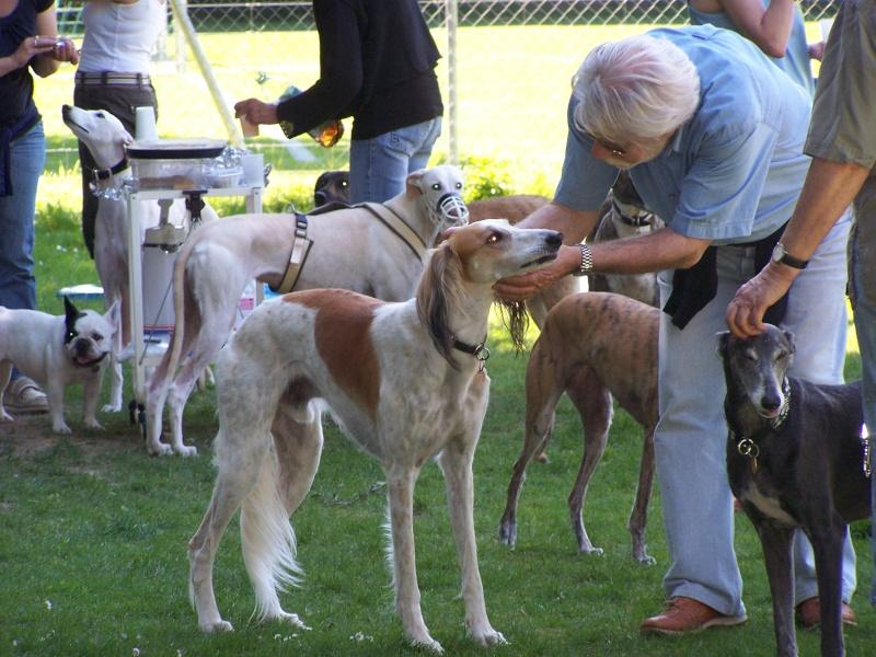 Rencontre entre adoptants au parc canin clôturé de Vidy (le 22 mai 2011) Avril-11