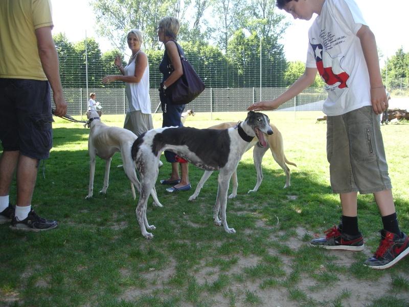 Rencontre entre adoptants au parc canin clôturé de Vidy (le 22 mai 2011) Photos13
