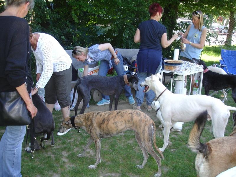 Rencontre entre adoptants au parc canin clôturé de Vidy (le 22 mai 2011) Photos14