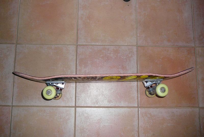 [vente] Skate complet ( Nomad , Venture quasi neuf ) P1060311