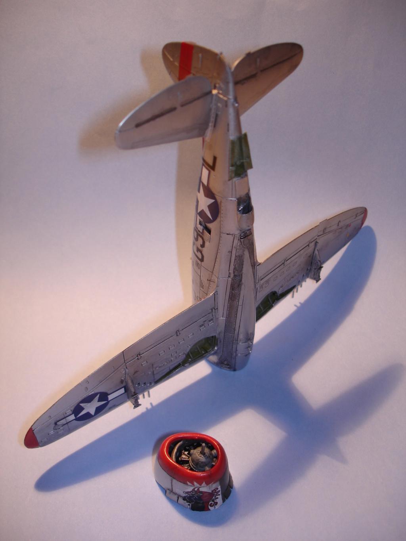 Vieillir un avion couleur alu Dsc00510