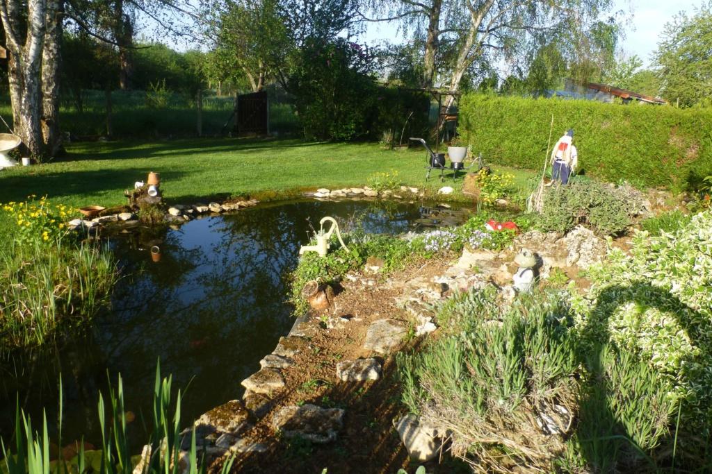 Mon beau jardin P1160818