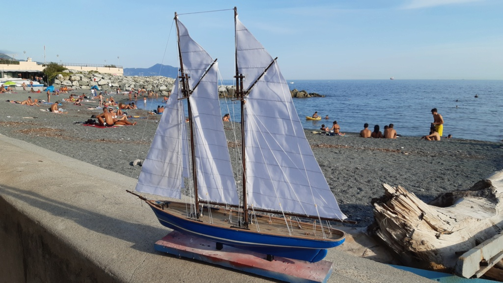 Lo yacht goletta francese  VELOX - Pagina 2 20200918