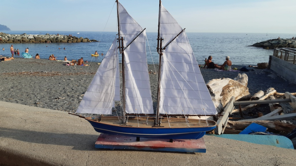 Lo yacht goletta francese  VELOX - Pagina 2 20200919