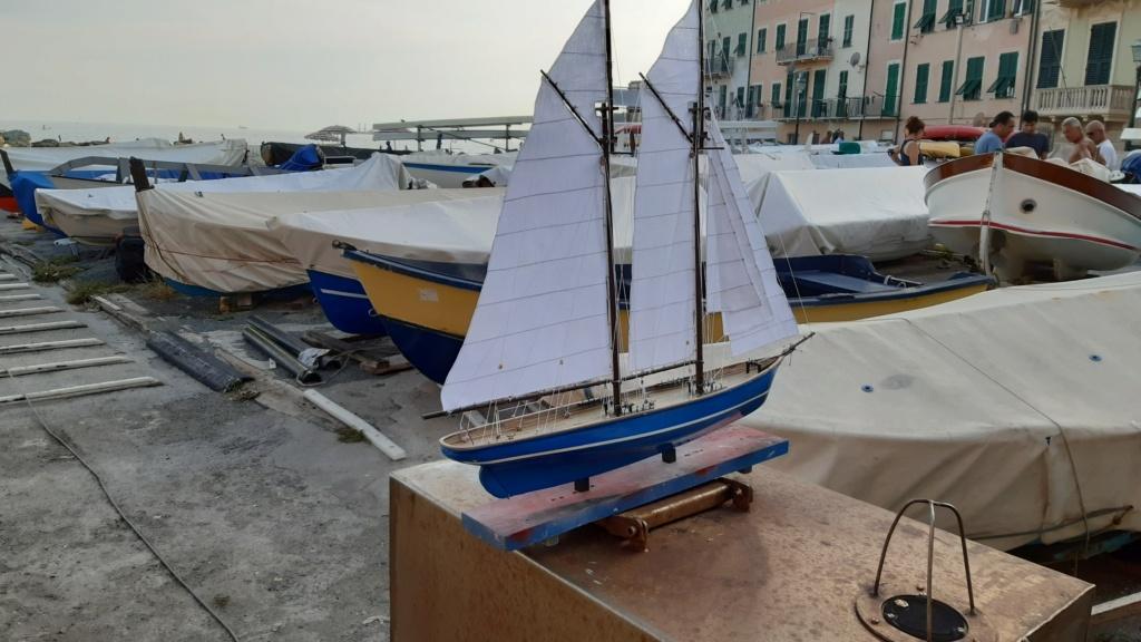 Lo yacht goletta francese  VELOX - Pagina 2 20200921