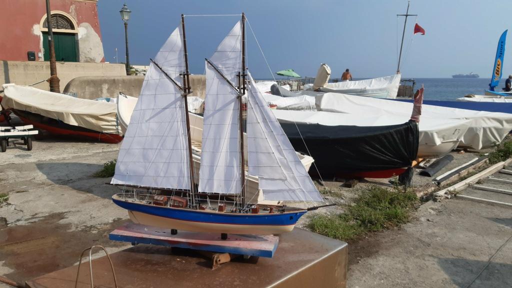 Lo yacht goletta francese  VELOX - Pagina 2 20200929