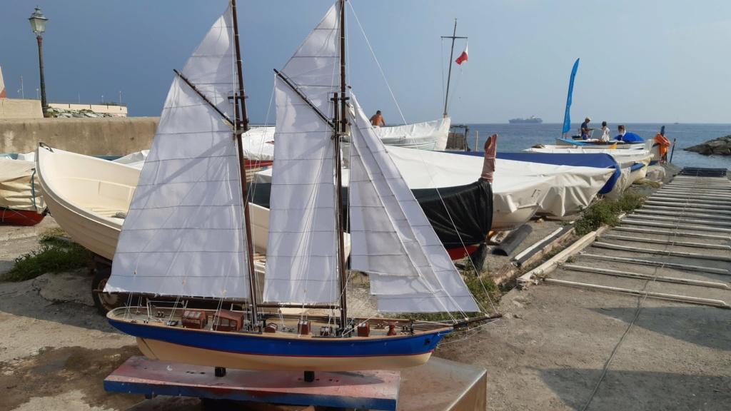 Lo yacht goletta francese  VELOX - Pagina 2 20200931