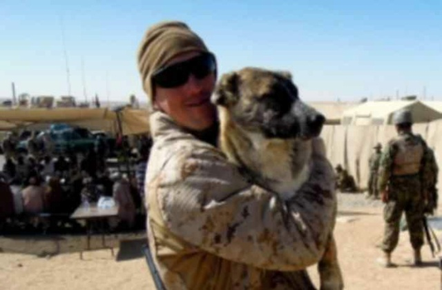 AFGHANISTAN : 98 chiens à évacuer du refuge Nowzad Afgha10