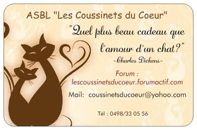 Forum Les Coussinets du Coeur Vista10