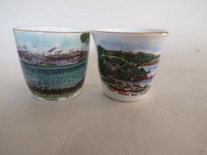 Royal Grafton souvenir dish 009-ro10