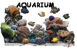 Zoomanager Aquari12
