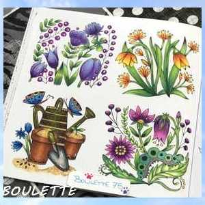 Staedler  crayon aquarellable  Boulet41