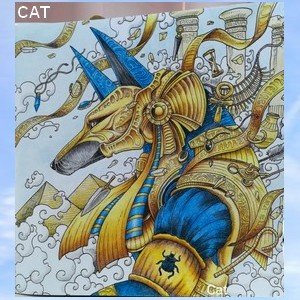 Connexion Cat111
