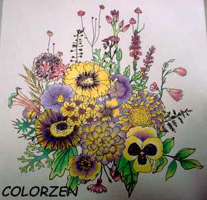 Coloriage anti-stress art-thérapie forum officiel coloriage zen adulte Colorz12