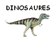 Zoomanager Dinosa10