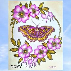 Connexion Domy45