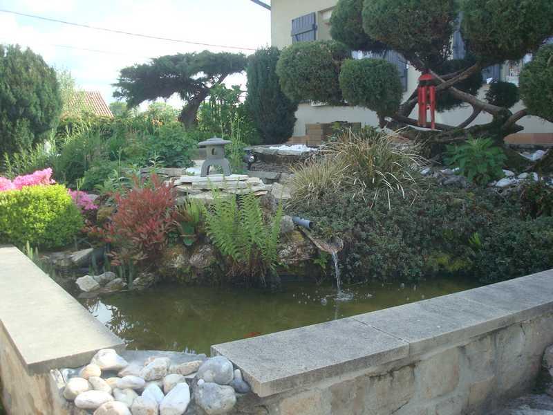 Les bassins Dsc00811