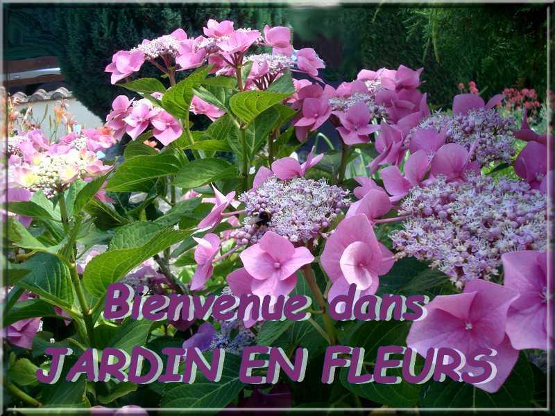 JARDINS FLEURIS Dsc02413