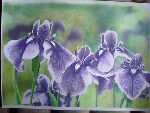 """Essai de dessin """"greysccale"""" et pastels secs... Dsc03771"""