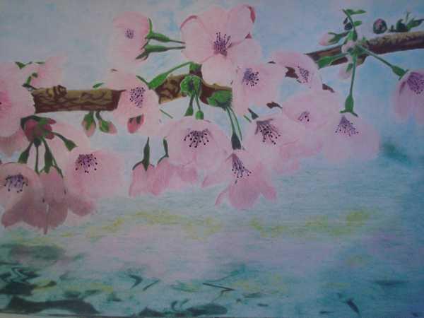 """Essai de dessin """"greysccale"""" et pastels secs... Dsc03956"""