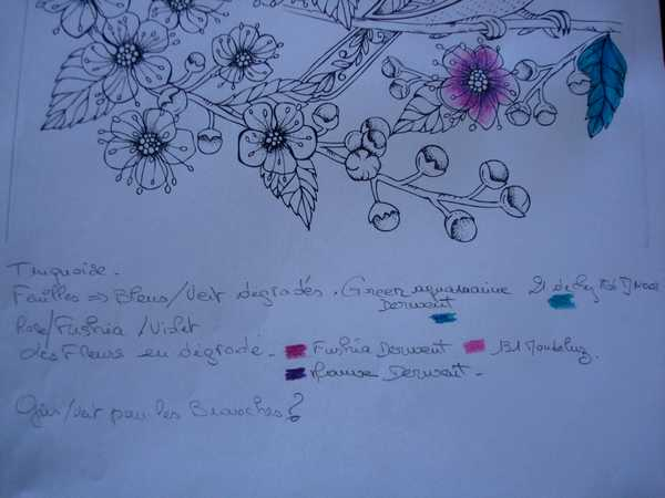 Mission de colorzen (transmise par Didine) : 3 clrs prédominantes Dsc04264