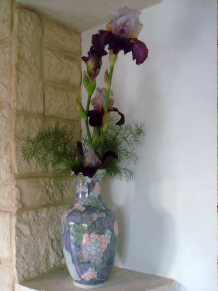 Des Iris, des feuilles de Fenouil... un bouquet ! Dsc05834