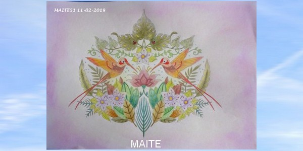 color peps oil pastels Maitzo54