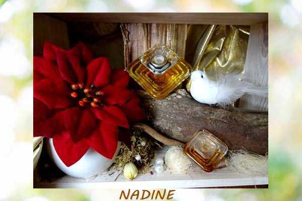 Miniatures de Parfum Nadine16