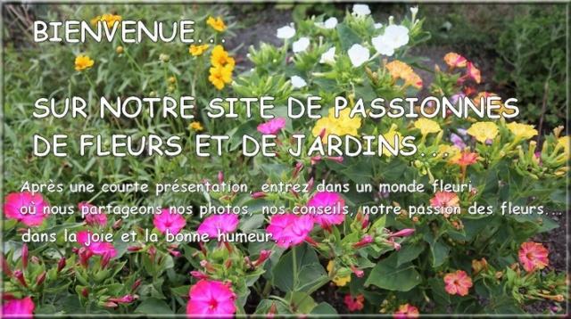 JARDINS FLEURIS Petite14