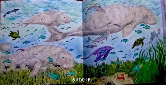 Qui connait ces crayons ?  Saddhu22