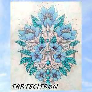 Coloriage anti-stress art-thérapie forum officiel coloriage zen adulte Tartec31