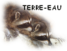 Zoomanager Terre-10