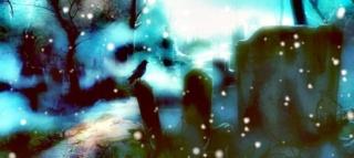 Oeil de Givre Cimeti11